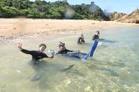 体験ダイビング&シュノーケリング加計呂麻島 - 奄美大島 ダイビングライフ    ☆アクアダイブコホロ☆
