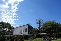 秋の庭しごと 現在の芝生の様子 - シンプルで心地いい暮らし