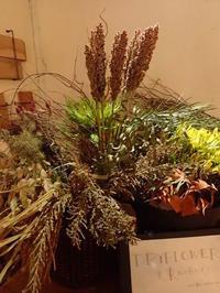 毎月第1日曜日はハーゼイコーゼ - 暮らしと植物のブログ