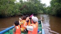 ガイドの日記:9月30日ガラマ川リバーサファリツアー - コタキナバル 旅行記・ブログ