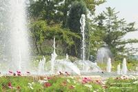 *植物園のお散歩* - 静かな時間