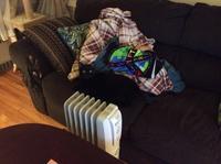 猫とオイルヒーター - にゃんこと暮らす・アメリカ・アパート