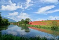 津屋川と明星輪寺のヒガンバナ - 高原に行きたい