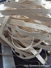 帯状樹皮の切り出しで日が暮れる - ロシアから白樺細工