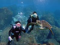 体験でも3ダイブ!ダイバーみたい(^_^) - 八丈島ダイビングサービス カナロアへようこそ!
