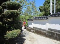 八代龍王(豊玉彦)が祭られた円墳と石室 - 地図を楽しむ・古代史の謎