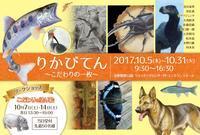 【展覧会】10/5〜10/31 りかび展@TAMA ZOO 2017 - junya.blog(猫×犬)リアリズム絵画