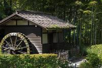 秋の日射し5 水車小屋と茅葺き - 彩りの軌跡