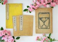 ガーデニング専門webサイト「Garden Story」がオープン! - 元木はるみのバラとハーブのある暮らし・Salon de Roses