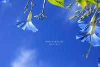 鴨さんと一緒に舟下り?・最終章 (鍾乳洞にも寄ってみた♪) - FUNKY'S BLUE SKY