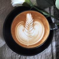 【ラテアートの描き方・解説】マッスルリーフ - 【カフェスタイルを生活にプラス】cafe beans +Y