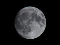 中秋の名月 - 写真を主とした日記です