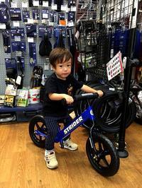 STRIDER:本日のストライダーキッズ / Sport Model・ブルー - カルマックス タジマ -自転車屋さんの スタッフ ブログ