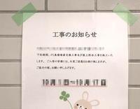 ぎょえー!!! - 賃貸ネコ暮らし|賃貸住宅でネコを室内飼いする工夫
