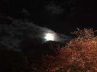 お月見 - 登別温泉 第一滝本館 たきもとブログ