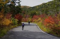 2017乗鞍紅葉ツーリングレポート part1〜再発見 - My Cycling Diary