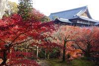 東福寺方丈(本坊)と庭園 - レトロな建物を訪ねて