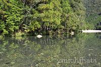 清流銚子川 - みちはた写真館フォトギャラリー
