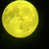 中秋の名月の記録(10月4日) - ひいぽぽタイムスNO.2