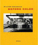 William Eggleston: Before Color - Satellite