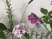花器が教えてくれたこと - 小さな花アトリエ
