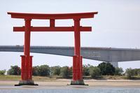 まゝに/10月の散策/中田島砂丘~掛川花鳥園 - Maruの/ まゝに