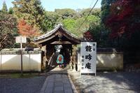 東福寺龍吟庵と庭園 - レトロな建物を訪ねて