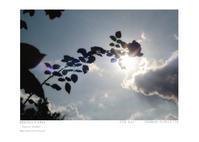 Piece of memory 099 - Shou's portfolio