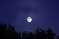 中秋の名月 - クレッセント日記