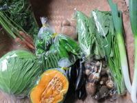 今週の野菜セット 10月1週目 - まるみど農園のあれこれ日記