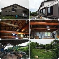 屋久島に住む甥っ子のサバイバル能力は親族一番 - スポック艦長のPhoto Diary