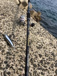 長崎堤防シイラメモ - ロンの釣り、時々日常。