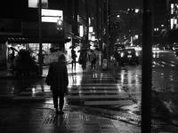 雨の夜 - 節操のない写真館