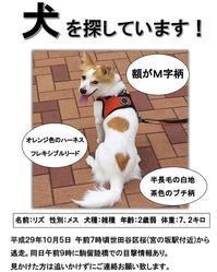 リズ捜索中 - 鉄丸が行く(withひめ)