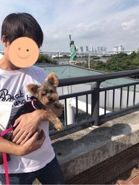 お台場海浜公園 - ぺろ日記