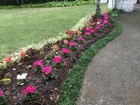気まぐれな庭 Garden Made Out of Caprices - my gallery-2