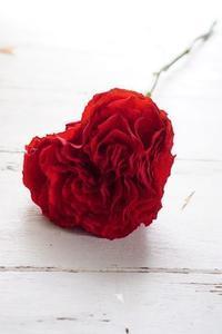 バラのハートにズキューン!秋色ボックスフラワー - お花に囲まれて