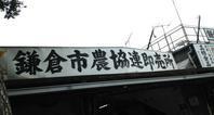 大町:新参者の kamakura walk - al mare 気ままにmamma (たまにnonna)