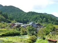 そうだ! 天気がいいから京都へ行こう! - 小町とママのつれづれ日記