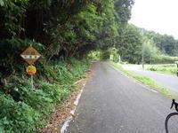 千倉林道と畑林道 - 40代からの山岳サイクリング