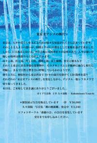 東京オアシスの断片、内容の文章 - フォトサークル      「森羅の会」