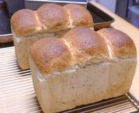 元気な山食でスタート - ~あこパン日記~さあパンを焼きましょう