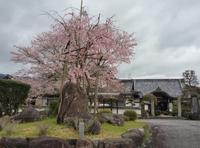 福知山市猪野々(いのの)地区の寺院・神社 - ほぼ時々 K'Chan Blog