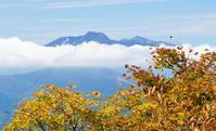 紅葉志賀高原2017 - いぐさん流 山と花の写真(富士山)