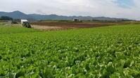 長野そぞろ歩き・山の記録:千曲川源流 - 日本庭園的生活