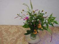お庭の花でお出迎え - あそびをせんとや ~あそびっこ~