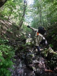 奥美濃/川浦周辺・沢から楢木へ - 山にでかける日