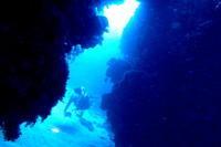 17.10.11 東風、相変わらず強く。。 - 沖縄本島 島んちゅガイドの『ダイビング日誌』