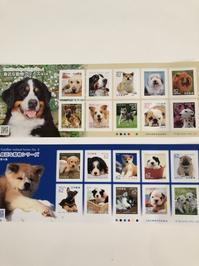 どうなっているんだ!特殊切手「身近な動物シリーズ」 - ミニチュアブルテリアダージと一緒2