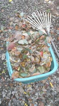 二本目-(柿)落ち葉掃除~ - よっし~発・・・・・手作り基地